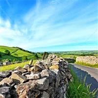 Yorkshire's Rhubarb Triangle