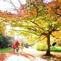 Upper Gardens Bourenmouth