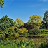 Harrogate-Halls-Gardens-Great-and-Small