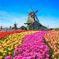 Springtime-in-Holland-Floriade