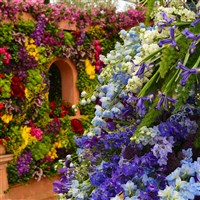 RHS Hampton Court Flower Show & Kew Gardens
