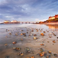 Captivating Coasts of Norfolk