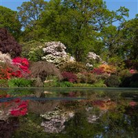 Gorgeous Gardens of Hampshire