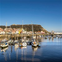 Magical Moorlands & Coastal Charms Scarborough